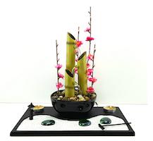 Giardino zen con fontana-2