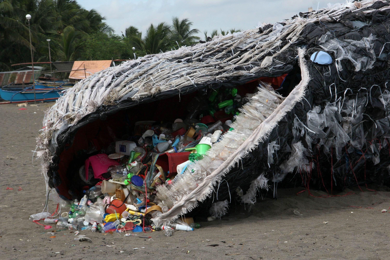 balena plastica greenpeace-2