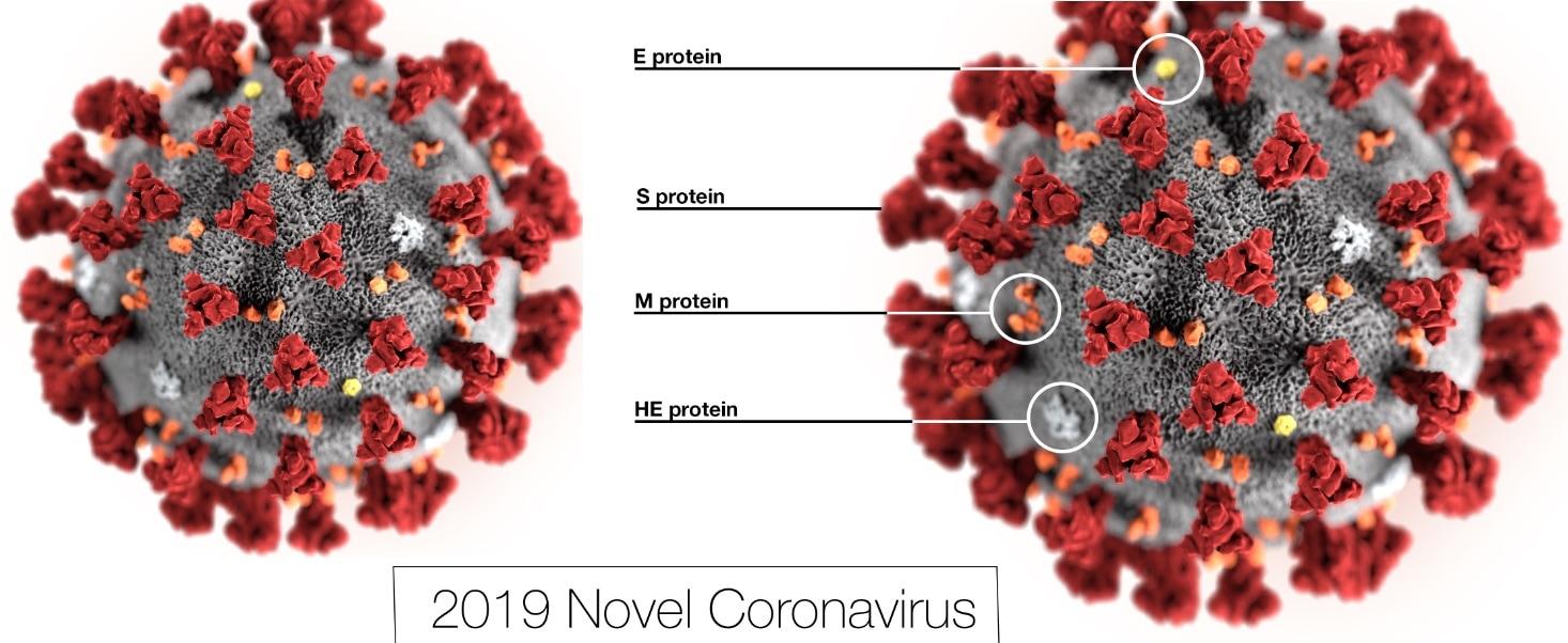 coronavirus contagio decesos mundo