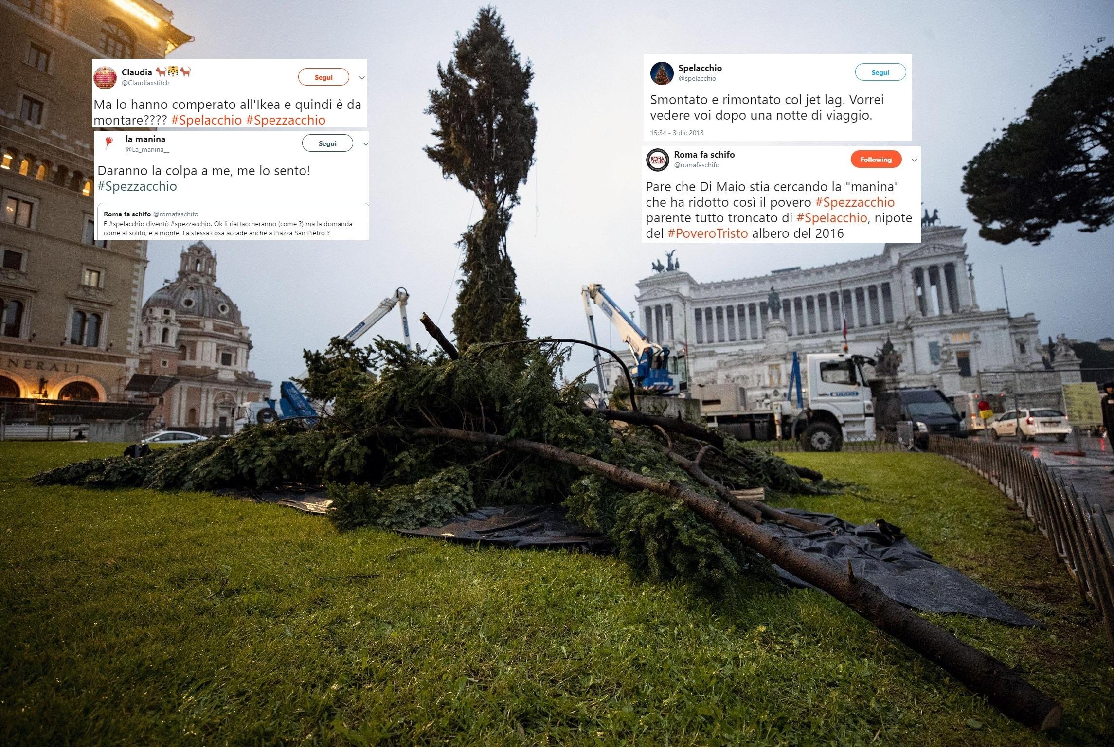 Albero Di Natale Roma.Da Spelacchio A Spezzacchio Perche L Albero Di Natale Di Roma Ha I Rami Spezzati