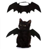Costume Pipistrello-2