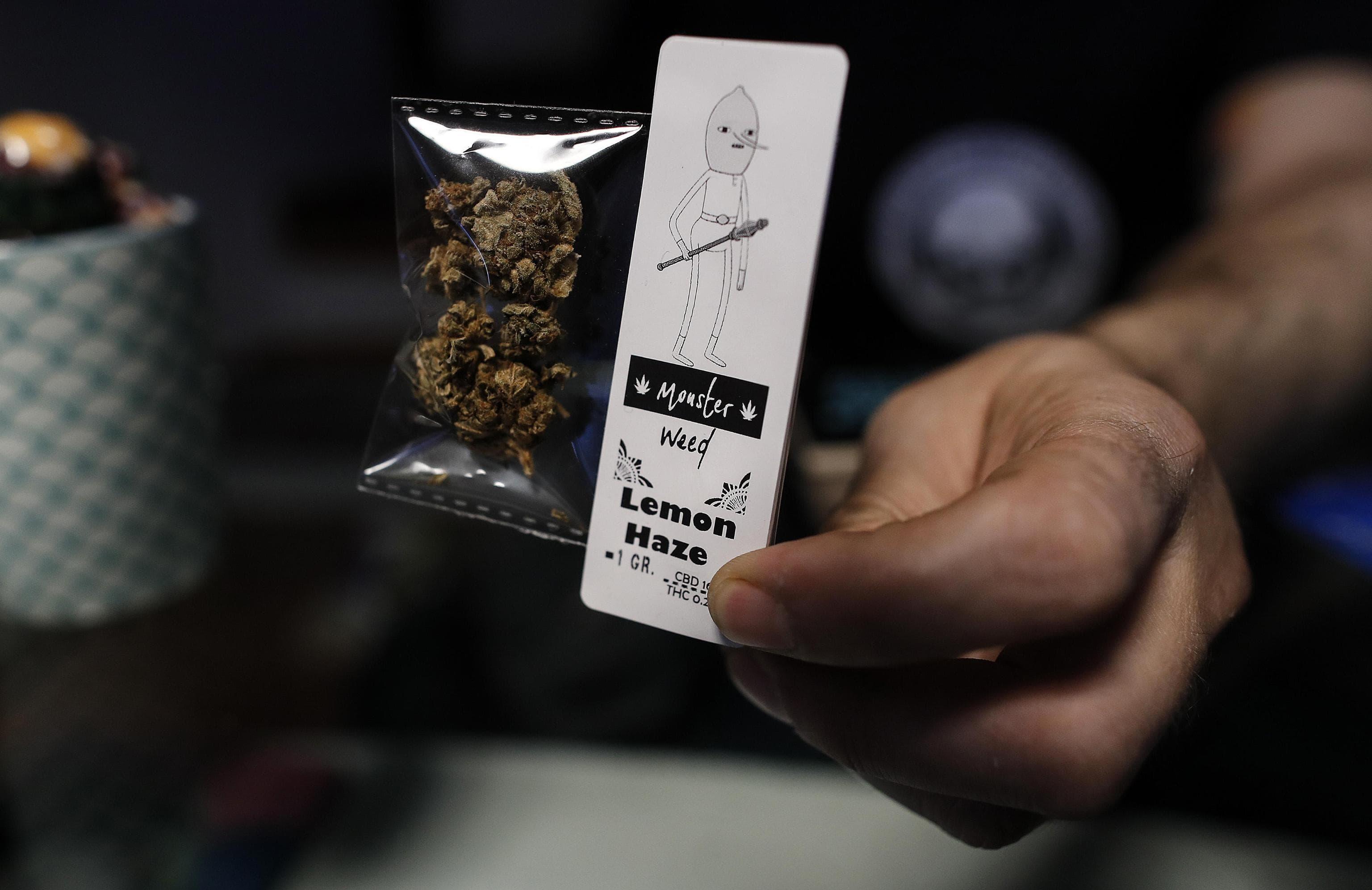 cannabis light negozio ansa2-2