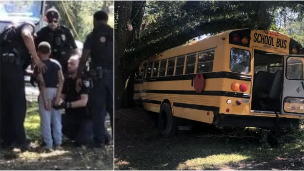 A 11 anni ruba uno scuolabus e si schianta contro un albero: arrestato dalla polizia