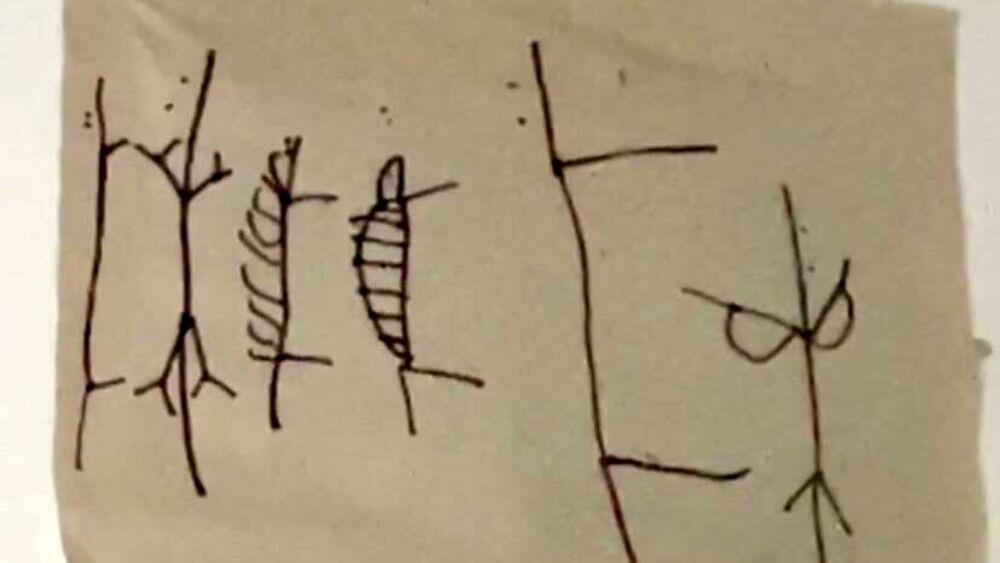 """Scopre un buco in casa mentre cerca il gatto: all'interno un foglio con disegni """"inquietanti"""""""