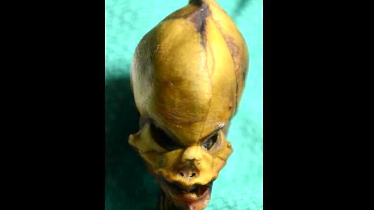 L'alieno di Atacama era una bambina