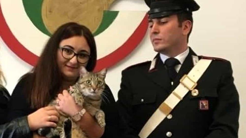 Trova un gatto smarrito e chiede 1000 euro per restituirlo: finisce male