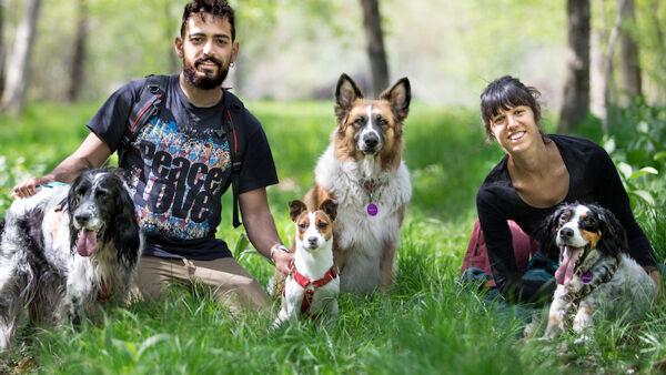 Educazione cinofila: la nostra intervista ai responsabili di Rolling Dogs