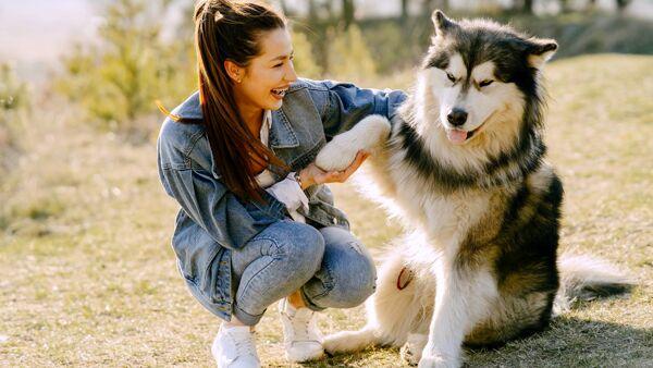 Come scegliere l'animale da adottare: tips e consigli utili