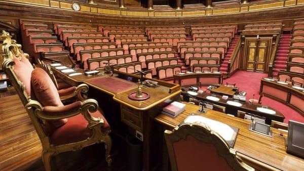 Senato, la diretta video da Palazzo Madama