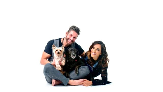 ZampyLife è l'app per migliorare la vita degli animali domestici e combattere il randagismo