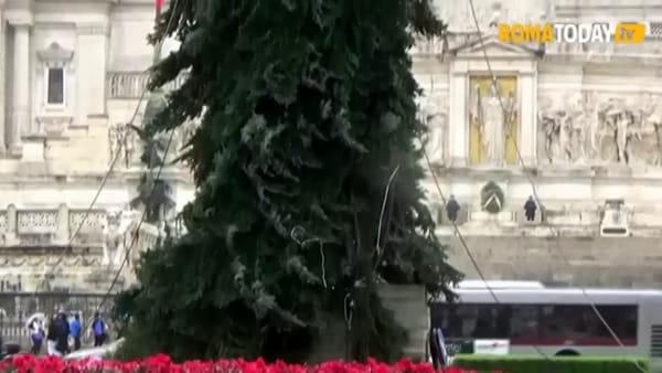 """L'albero di Natale di Roma? Il nuovo """"spelacchio"""" è componibile"""