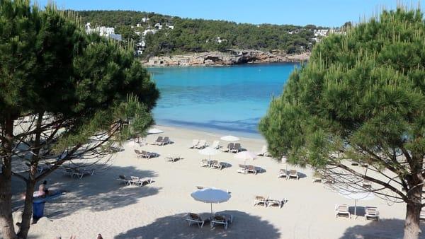 """L'azienda va bene, imprenditore premia i suoi dipendenti: """"Li porto in vacanza ad Ibiza"""""""
