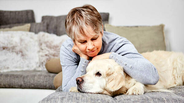 Le fragilità del cane anziano, ecco come riconoscerle e gestirle al meglio