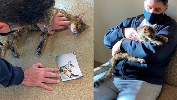 Dopo 15 anni ritrova il suo proprietario: l'incredibile storia della gatta Brandy
