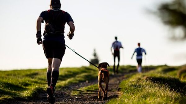 Tenersi in forma correndo e facendo attività fisica con il cane