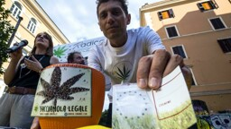 """Cannabis legale: il referendum rischia il """"sabotaggio"""""""