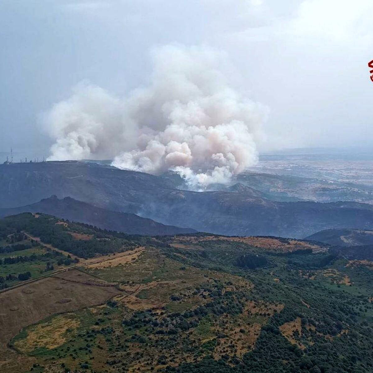 Inferno in Sardegna: ci vorranno decenni per recuperare l'ambiente