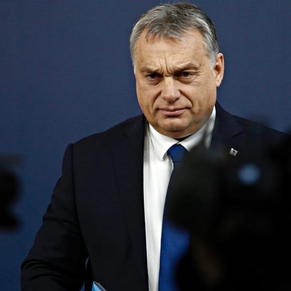 """L'Ue contro la legge ungherese che vieta la 'propaganda gay': """"Vergognose discriminazioni"""""""