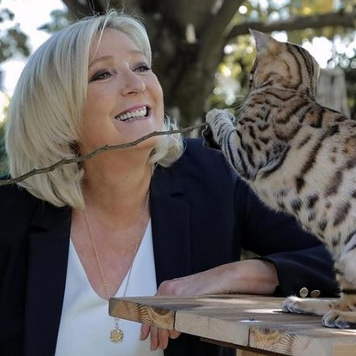 """Marine Le Pen diventa allevatrice di gatti. E promette: """"Porterò i miei sei mici all'Eliseo"""""""
